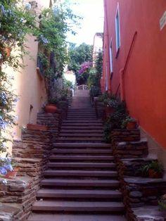 Collioure; escalier...