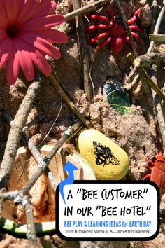 Bee Play and Learning Ideas for Earth Day - Why Are Bees Important by B-Inspired Mama on ALLterNATIVElearning