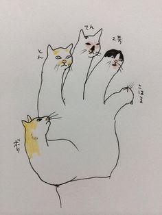 By yuko Higuchi 「キャッツ・ハンド」 # Cat's Hand
