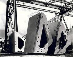 1963 Max Dupain, rib segments