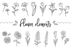 Best 9 Doodle Flowers Clipart and Vectors – Hand Drawn Flower and Leaf Doodles / Sketch – Nature / Foliage / Botanical Drawings – Commercial Use – SkillOfKing. Art Floral, Floral Doodle, Floral Drawing, Simple Flower Drawing, Easy Flower Drawings, Bullet Journal Art, Bullet Journal Inspiration, Doodle Drawings, Doodle Art