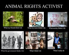 Animal Rights Activist~ except for the last one, pretty much!