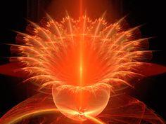 opening-orange-fractal-flower.gif