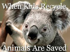 When Kids Recycle, Animals are Saved - Simple Ways for Children to Recycle and how it helps animals