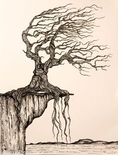 """Ink drawing, """"aged to perfection"""", wind blown tree poised on a cliff, ocean and land below Wind Drawing, Painting & Drawing, Tree Sketches, Drawing Sketches, Drawing Tips, Drawing Ideas, Ink Pen Drawings, Cool Drawings, Pencil Drawings Of Nature"""