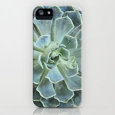 Succulents II  iPhone & iPod Case by Lisa Argyropoulos - $35.00