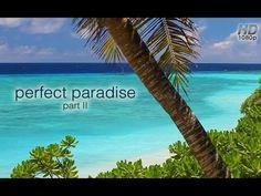 #Fiji #Nanuku #paradice