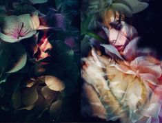 Double Exposure of Flowers by Lara Kiosses
