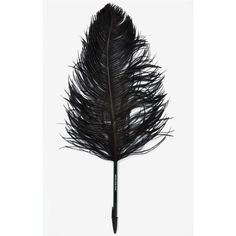 Maison Martin Margiela Ostrich Feather Plume Pen found on Polyvore featuring home, home decor, office accessories, black, plume pen, logo pens, black box, black pens and ostrich feather pen
