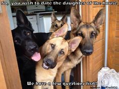 New boyfriend is being background checked, by the family security team.