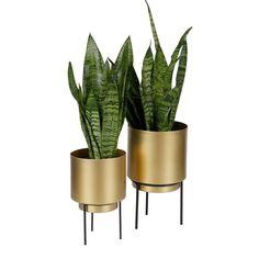 Guus blomsterpotte, M - designerhome. Interior Decorating, Interior Design, Planter Pots, Restaurant, Living Room, Bedroom, House, Home Decor, Gadgets