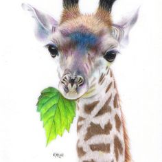 """""""Baby Giant"""", 2.5 x 3.5 inches, Coloured pencils and ink on drafting film - by artist, Karen Hull of 'Karen Hull Art' via redbubble.com."""