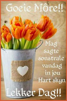 Good Morning Funny, Good Morning Messages, Good Morning Wishes, Day Wishes, Good Morning Quotes, Family Qoutes, Lekker Dag, Afrikaanse Quotes, Goeie More