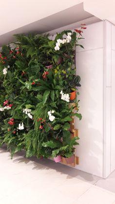 62 Gardening Tips You Ought To Make Note Of Plant Wall, Plant Decor, Indoor Garden, Indoor Plants, Vertikal Garden, Buy Flowers Online, Vertical Garden Design, Paludarium, Hanging Plants