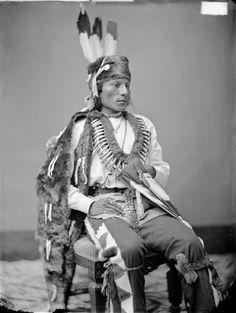 Black Fox, guerrier arikara photo 1874. les griffes de grizzli de son superbe collier sont attachées à une peau de loutre.Au-dessus de son turban, en loutre également, se dressent trois plumes d'aigle royal, symbole d'exceptionnels faits d'armes.Taylor et Sturtevant les Indiens d'Amérique du Nord page 98