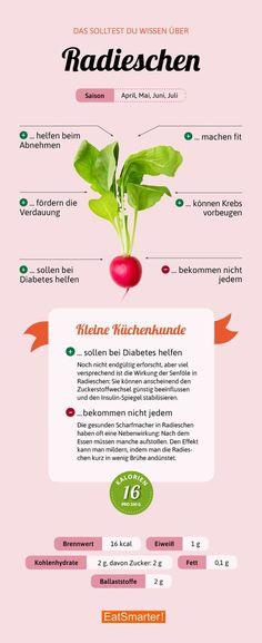 Darum sind Radieschen so gesund | eatsmarter.de #radieschen #infografik #ernährung