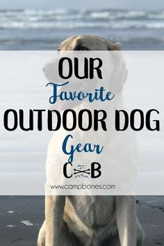 Our Favorite Outdoor Dog Gear. Our yellow lab is a part of our family and goes on all our adventures. This list of outdoor dog gear keeps him safe, happy, and healthy while we adventure! #gear #pets #dogs #outdoors #camping #adventure #hiking #boating #rv