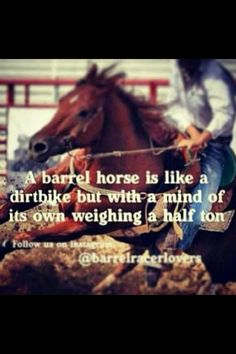100+ Best cowgirl quotes images | cowgirl quotes, quotes, horse quotes