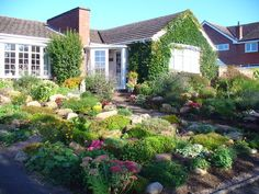 Front yard Rock garden idea and landscaping.