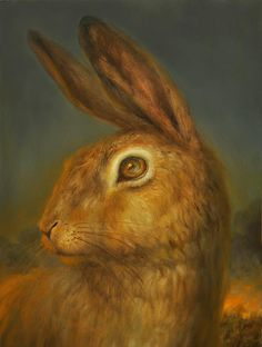 Martin Wittfooth - Untitled (Watership Down) Illustrations, Illustration Art, Martin Wittfooth, Rabbit Run, Watership Down, Bunny Art, Woodland Creatures, Famous Artists, Hare