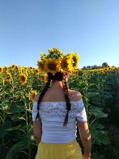 #photo#sunflowers