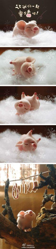 冬至你们吃...来自猫宅主人的图片分享-堆糖