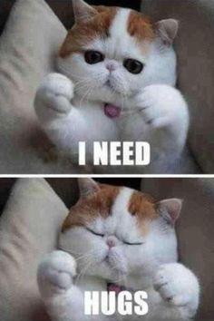 Kitty:)