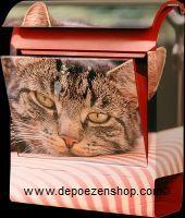 Talking Letterboxes with cat picture  http://www.depoezenshop.com