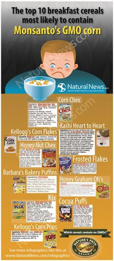 Top 10 breakfast cereals most likely to contain Monsanto's GMO corn. http://www.naturalnews.com/Infographic-10-Breakfast-Cereals-Most-Likely-Contain-Monsanto-GMO-Corn.html