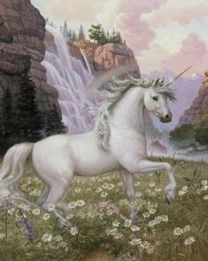 unicorns - Google Search    I have this image but on a plate...