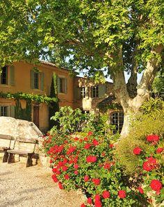 Nice Houses, Travelling, Home Goods, Pergola, Modern, Plants, Trendy Tree, Beautiful Homes, Outdoor Pergola