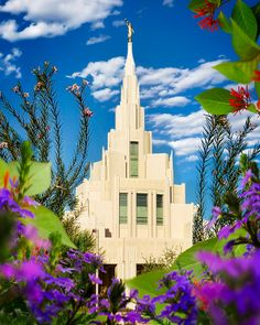 Phoenix is a collection of art that is currently available for purchase at reflectedpixel. Lds Temple Pictures, Lds Temples, Latter Day Saints, Jesus Christ, Phoenix, Photo Ideas, Arizona, Art Photography, Photographs