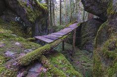 An abandoned bridge collecting moss in Hope, British Columbia. Photo taken by CG Photo Club member Jason Wilde, from Chillwack, British Columbia.