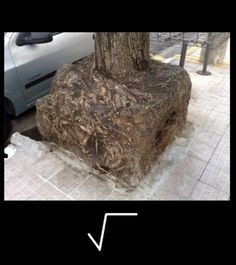 square root !