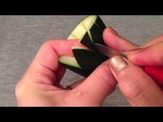 Cucumber Lily Flower - Lesson 24 by Mutita Art of Fruit & Vegetable Carving