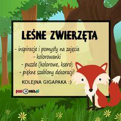 Zwierzęta leśne - kolorowanki, szablony i wiele innych!