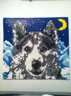 Wolf perler beads by icrama