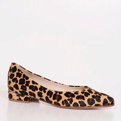 Leonore Leopard Pony, leopard