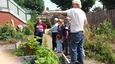 FORA Visit to Community Gardens Project Garden Projects, Gardens, Community, Events, Fruit, Outdoor Gardens, Garden, House Gardens