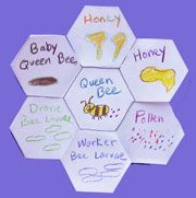 Bee Crafts and Learning Activities Kids Can Make that are great for homeschools, preschools, and daycares. Kids Learning Activities, Spring Activities, Fun Learning, Science Fair, Science Lessons, Science Projects, Bee Facts, Honeycomb Shape, Shape Books