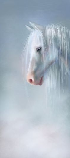 mysoul4u:  Horsemist by =Foxbane I'm new here, so follow for follow!