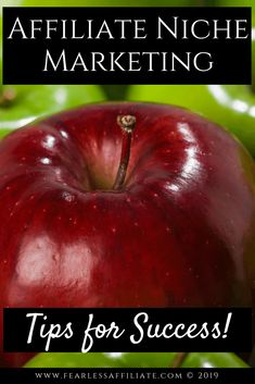 Affiliate niche marketing is the union of your passion with a way to earn money from it. Helping people online will naturally lead to income if you do it right, so today learn what you need to know for success. Creating your winning side hustle or full time income. #affiliatemarketing #affiliatenichemarketing #makemoneyonline