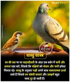 Pin By Jignesh On Yantra In 2019 Hindu Dharma, Vedic in feng shui zodiac 2019 Gernal Knowledge, General Knowledge Facts, Knowledge Quotes, Vedic Mantras, Hindu Mantras, Positive Energy Quotes, Hindi Good Morning Quotes, Vastu Shastra, Hindu Rituals