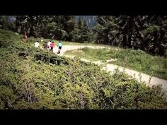 Bellwald - Sport und Natur im Einklang Wallis, Switzerland, Vineyard, Sports, Outdoor, Swiss Alps, Hs Sports, Outdoors, Vine Yard