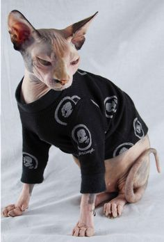 Sphynx Cat Clothes Long Sleeve Cameo Christmas Holiday Cat Sweater Thermal Pet Clothes Christmas Chinese Crested Dog Clothes Pet Costume First