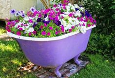 Petunias And Calibrachoa Shining All Season Petunias in Bathtub Container.a use for that old bathtub!Petunias in Bathtub Container.a use for that old bathtub! Garden Design, Container Garden Design, Garden Help, Garden Bathtub, Cool Plants, Petunias, Planters, Container Gardening, Yard Landscaping