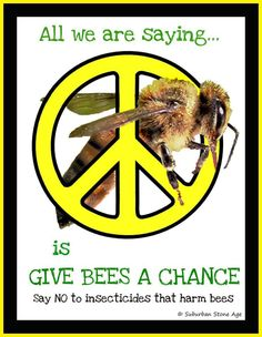 Only 4 Days left to the big day! Saturday, August 16 is National Honey Bee Day. There will be plenty of sharing through social media along with marches and protests around the world. This is our chance to make a statement to Monsanto, Bayer & other pesticide companies. Together we can tell the world leaders to do the right thing to save the bees! https://www.facebook.com/events/934172763266297/