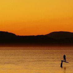 A sweet Sunday romance. Photo by Common Ground Byron Bay Bay News, Sweet Sundays, Common Ground, Byron Bay, Training Courses, South Wales, Sunrises, Fields, Coastal