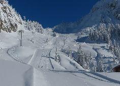 Zima, Góry, Nartostrada, Lasy