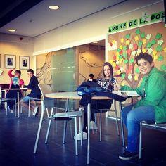 Ens ha arribat més material per a la #bibliotecajove #bibliojove L'estem estrenant!!!